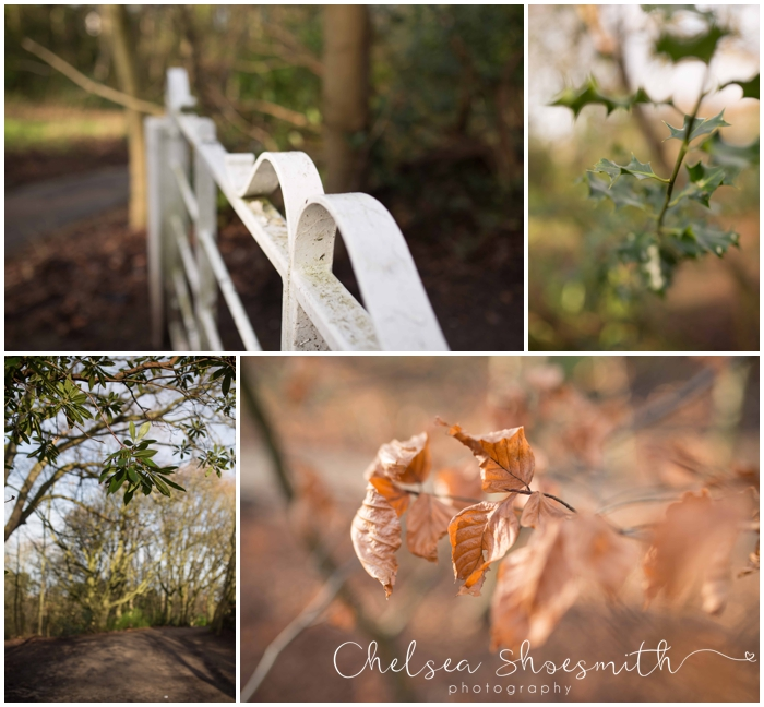 (1 of 30) Bramhall Park Hall Just because Chelsea Shoesmith Photography_
