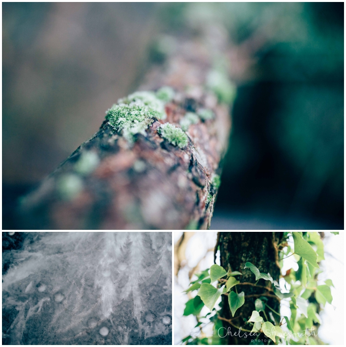 (14 of 18) Frozen garden, Just Because, Chelsea Shoesmith Photography_