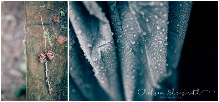 (18 of 18) Frozen garden, Just Because, Chelsea Shoesmith Photography_