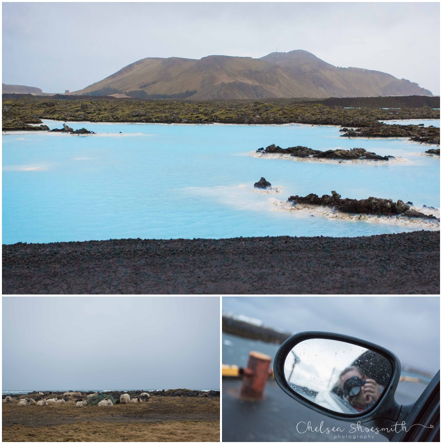 (52 of 131) Iceland Chelsea Shoesmith Photography_