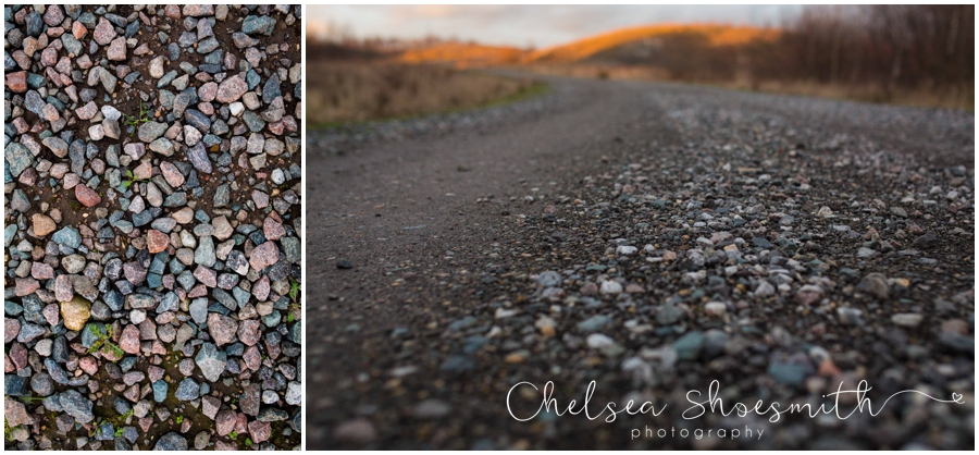 (10 of 18) Humberhead peatlands nature photography chelsea shoesmith photography yorkshire photographer_