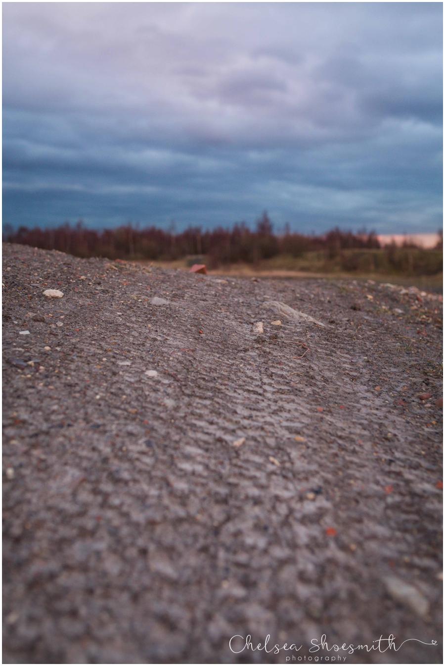 (11 of 18) Humberhead peatlands nature photography chelsea shoesmith photography yorkshire photographer_