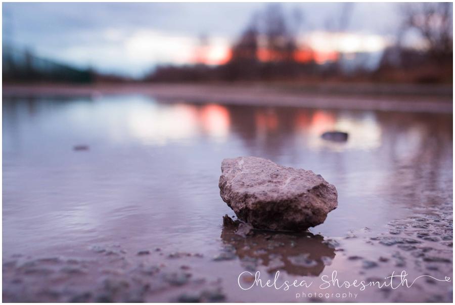 (16 of 18) Humberhead peatlands nature photography chelsea shoesmith photography yorkshire photographer_