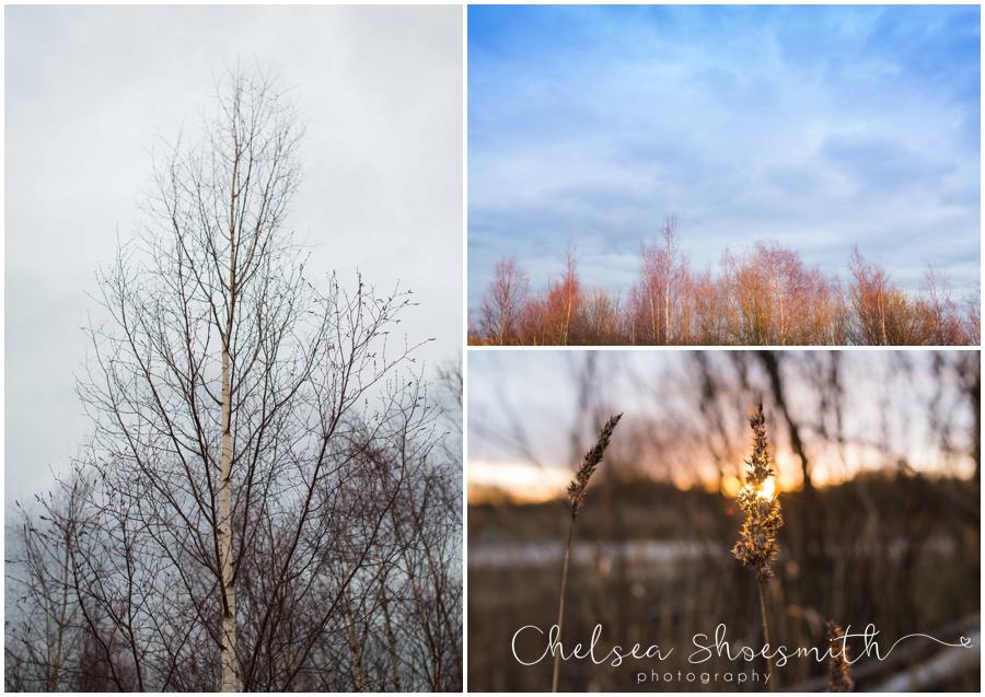 (5 of 18) Humberhead peatlands nature photography chelsea shoesmith photography yorkshire photographer_