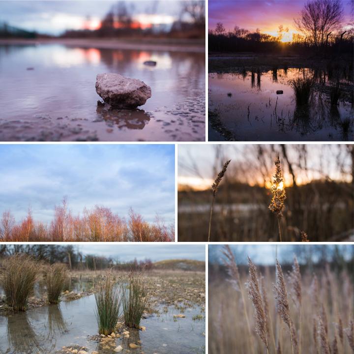 Humberhead Peatlands Nature Reserve, Just Because..