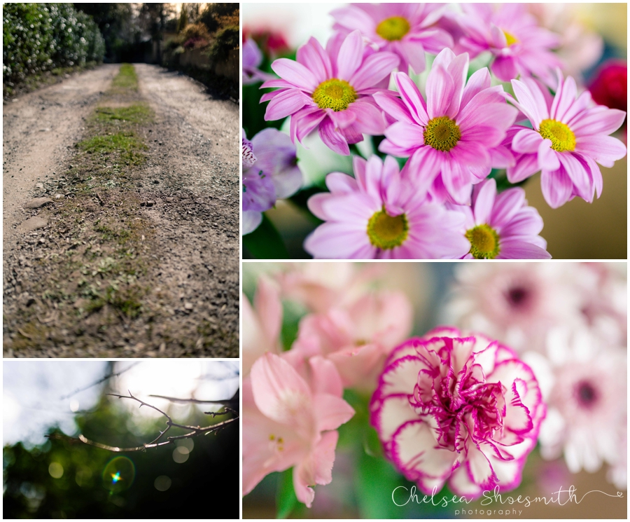 (16 of 19) Spring, Just Because... cheshire photographer chelsea shoesmith photography_