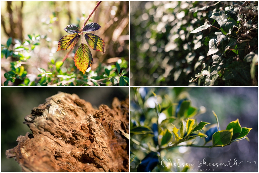 (6 of 19) Spring, Just Because... cheshire photographer chelsea shoesmith photography_