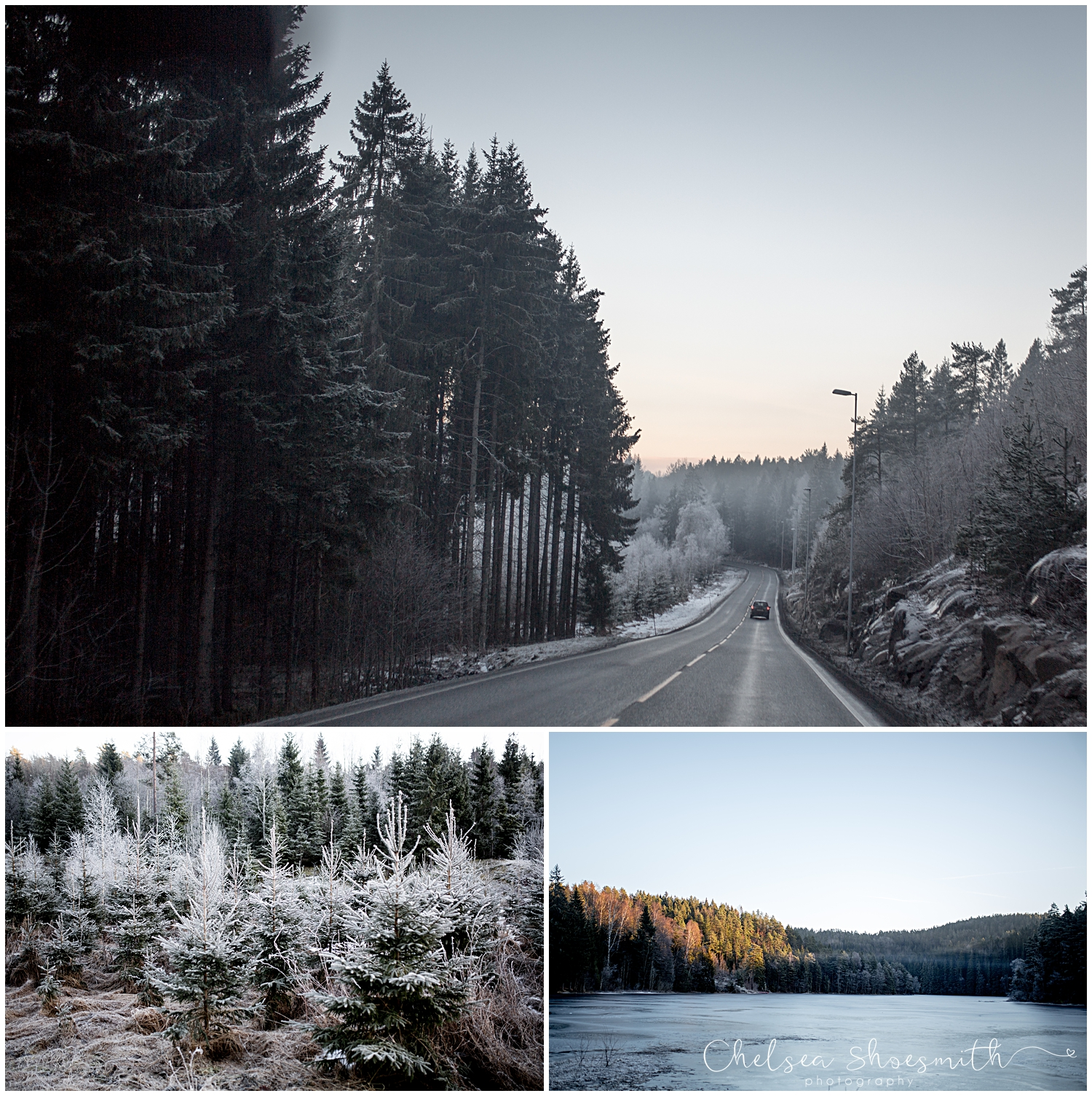 244Total # (1) Norway Photographs Chelsea Shoesmith Photography (of)