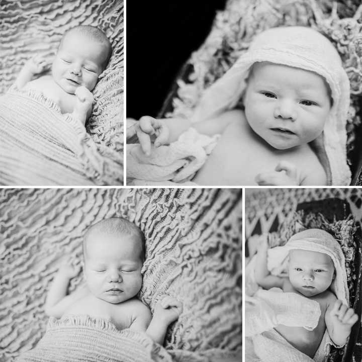 Eddison - Cheshire Newborn Photography